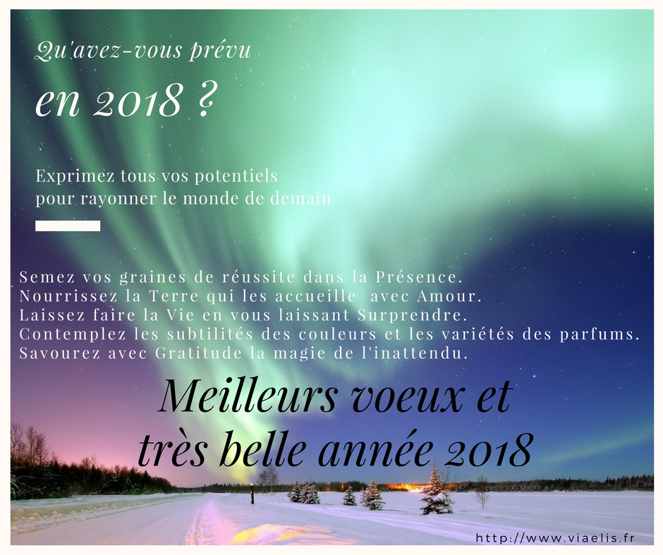 Voeux 2018 Viaelis