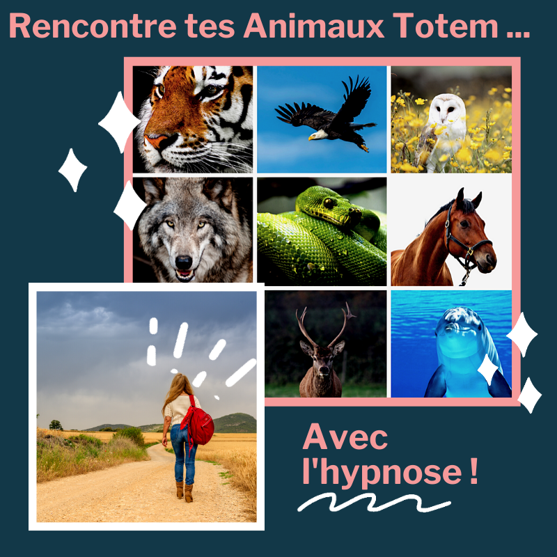 Animaux Totem Hypnose
